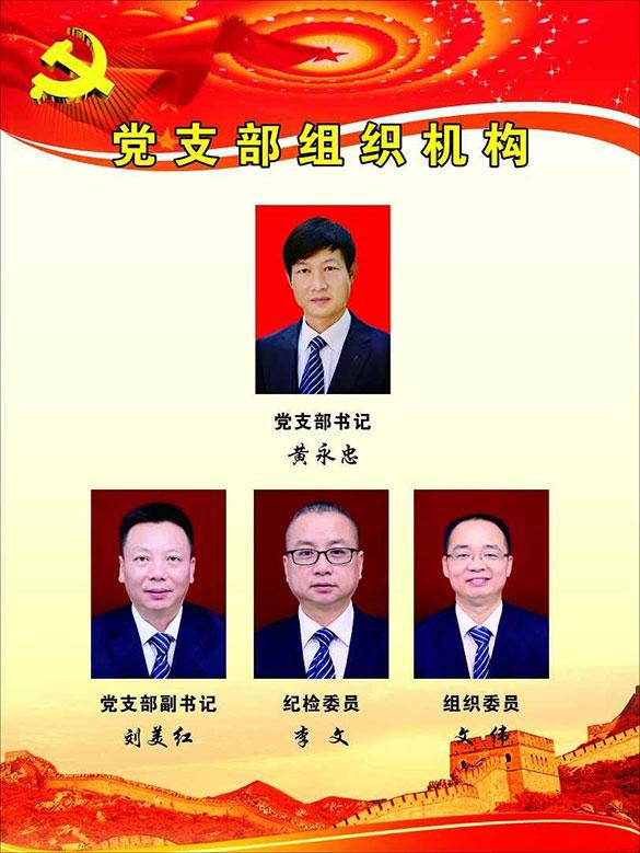党支部组织机构